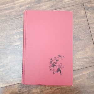The Happy Hollisters Hardcover Book